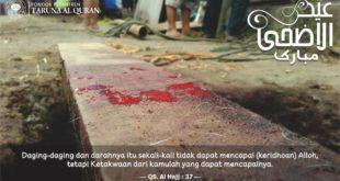 darah-qurban